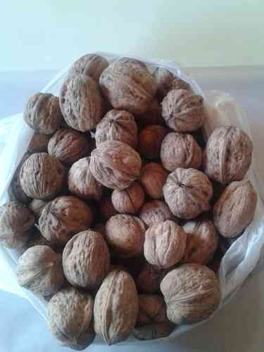 Nueces del Terreno (500g)
